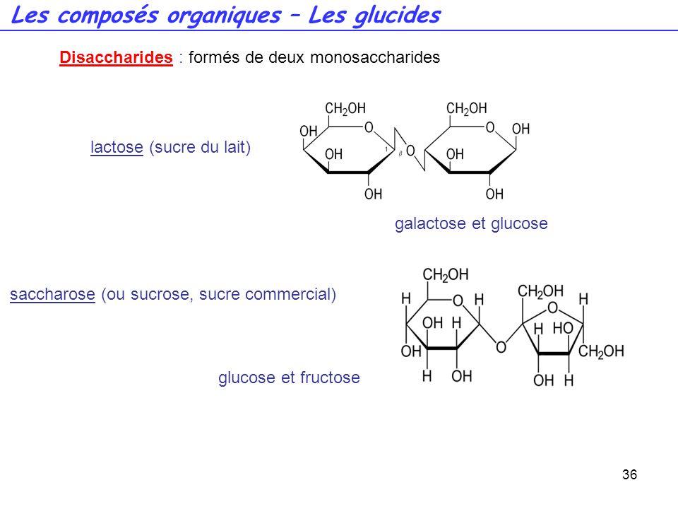 36 Disaccharides : formés de deux monosaccharides lactose (sucre du lait) galactose et glucose saccharose (ou sucrose, sucre commercial) glucose et fr