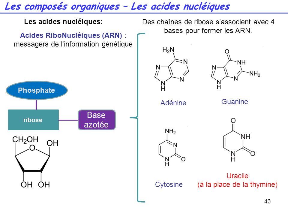 43 Adénine Guanine Cytosine Uracile (à la place de la thymine) Des chaînes de ribose sassocient avec 4 bases pour former les ARN. Les composés organiq
