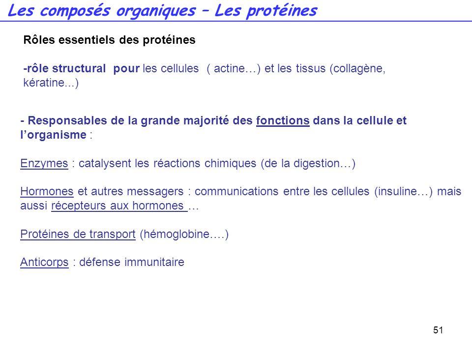 51 - Responsables de la grande majorité des fonctions dans la cellule et lorganisme : Enzymes : catalysent les réactions chimiques (de la digestion…)