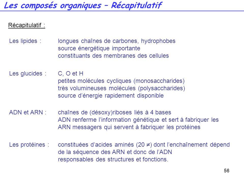 56 Récapitulatif : Les glucides :C, O et H petites molécules cycliques (monosaccharides) très volumineuses molécules (polysaccharides) source dénergie