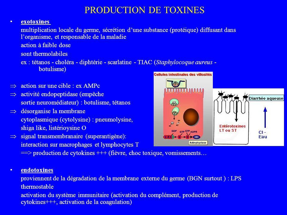 PRODUCTION DE TOXINES exotoxines multiplication locale du germe, sécrétion dune substance (protéique) diffusant dans lorganisme, et responsable de la