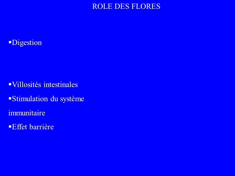 Digestion Villosités intestinales Stimulation du système immunitaire Effet barrière ROLE DES FLORES
