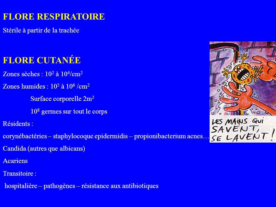 FLORE RESPIRATOIRE Stérile à partir de la trachée FLORE CUTANÉE Zones sèches : 10 2 à 10 4 /cm 2 Zones humides : 10 5 à 10 6 /cm 2 Surface corporelle