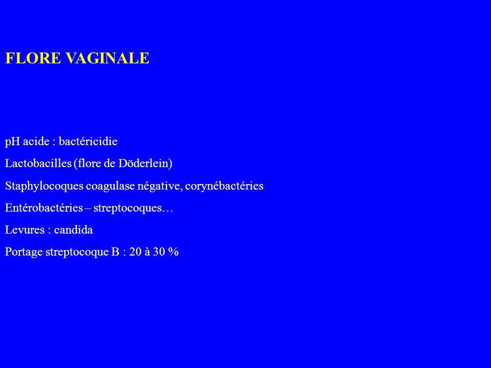 FLORE VAGINALE pH acide : bactéricidie Lactobacilles (flore de Döderlein) Staphylocoques coagulase négative, corynébactéries Entérobactéries – strepto