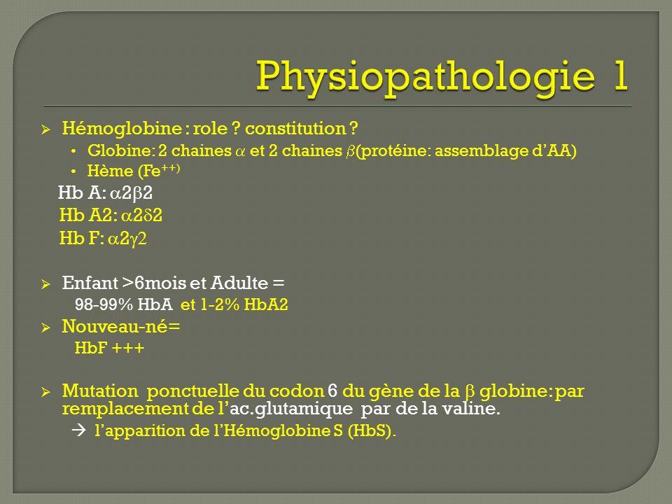 Hémoglobine : role ? constitution ? Globine: 2 chaines et 2 chaines (protéine: assemblage dAA) Hème (Fe ++) Hb A: 2 2 Hb A2: 2 2 Hb F: 2 Enfant >6mois