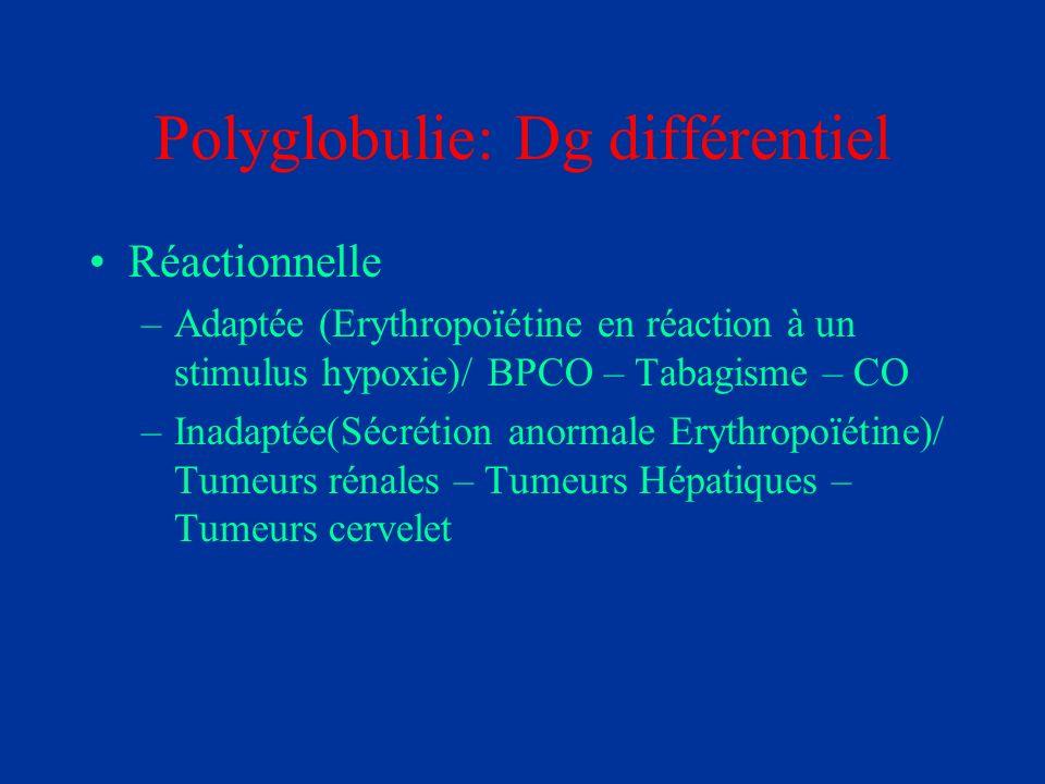 Polyglobulie: Dg différentiel Réactionnelle –Adaptée (Erythropoïétine en réaction à un stimulus hypoxie)/ BPCO – Tabagisme – CO –Inadaptée(Sécrétion a