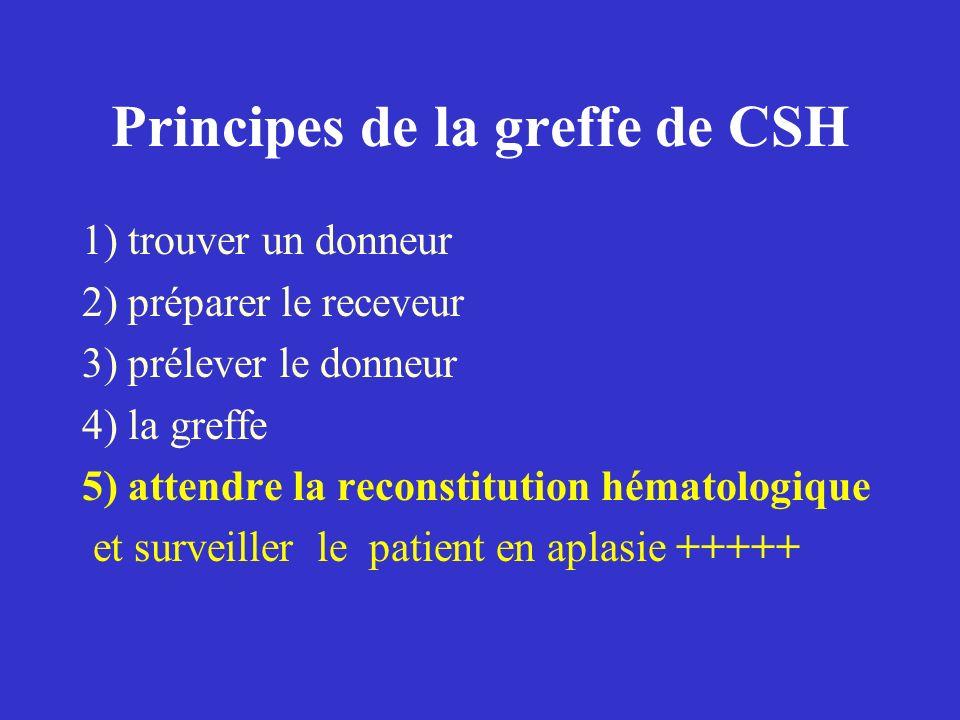 Principes de la greffe de CSH 1) trouver un donneur 2) préparer le receveur 3) prélever le donneur 4) la greffe 5) attendre la reconstitution hématolo