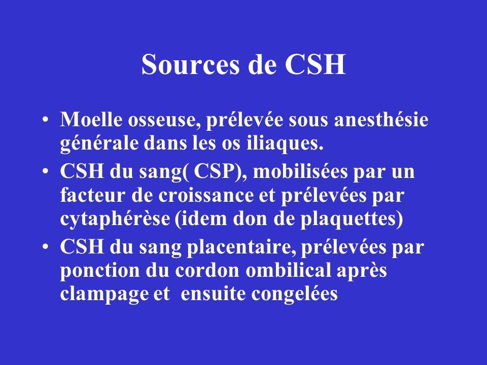 Sources de CSH Moelle osseuse, prélevée sous anesthésie générale dans les os iliaques. CSH du sang( CSP), mobilisées par un facteur de croissance et p