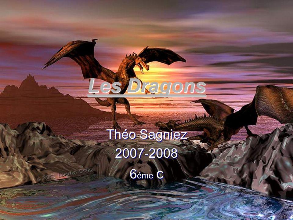 Théo Sagniez 2007-2008 6 éme c Les Dragons