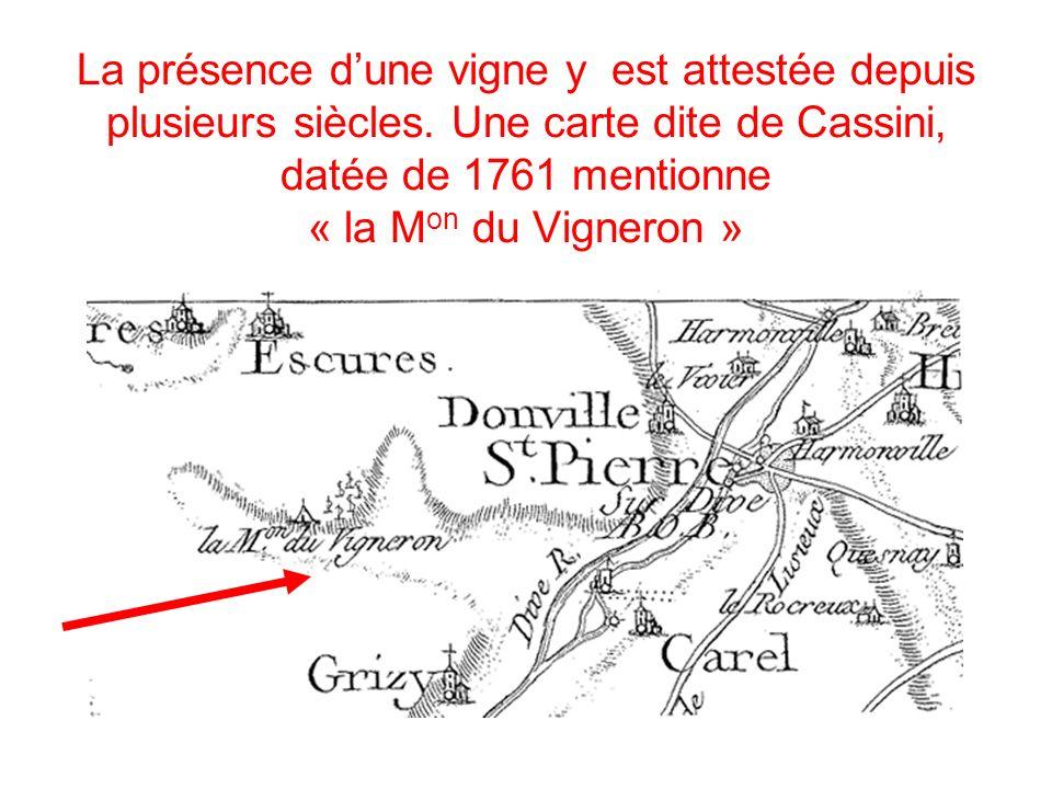 La présence dune vigne y est attestée depuis plusieurs siècles. Une carte dite de Cassini, datée de 1761 mentionne « la M on du Vigneron »