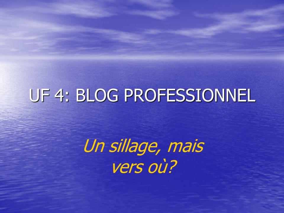 UF 4: BLOG PROFESSIONNEL Un sillage, mais vers où
