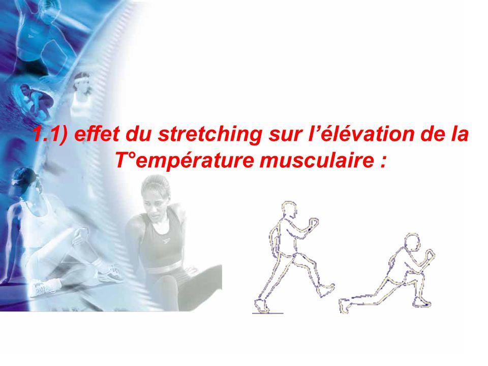 Lélévation de la température interne des muscles dépend de leur vascularisation.