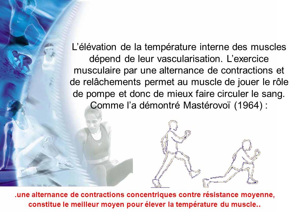 Examinons ce qui se passe au cours des étirements : Alter (1996) auteur dun ouvrage remarquable «Science of flexibility », démontre que les étirements provoquent dans le muscle des tensions élevées qui entraînent une interruption de lirrigation sanguine, ce qui va à linverse de leffet « vascularisateur » recherché.