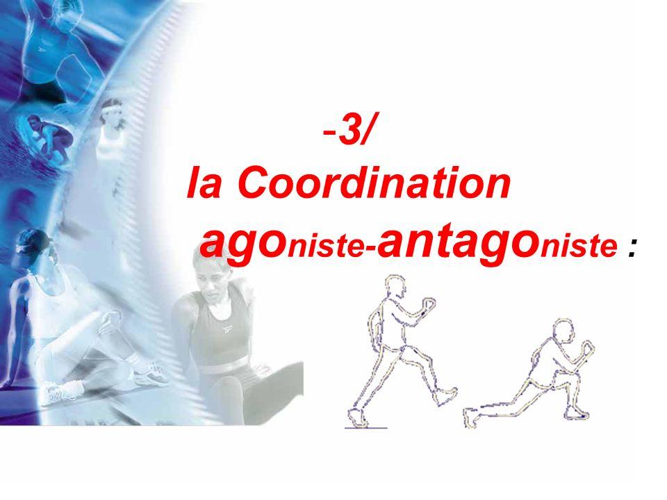 Le fait de chercher à relâcher exagérément et à solliciter passivement certains muscles met en cause la bonne coordination agoniste-antagoniste.
