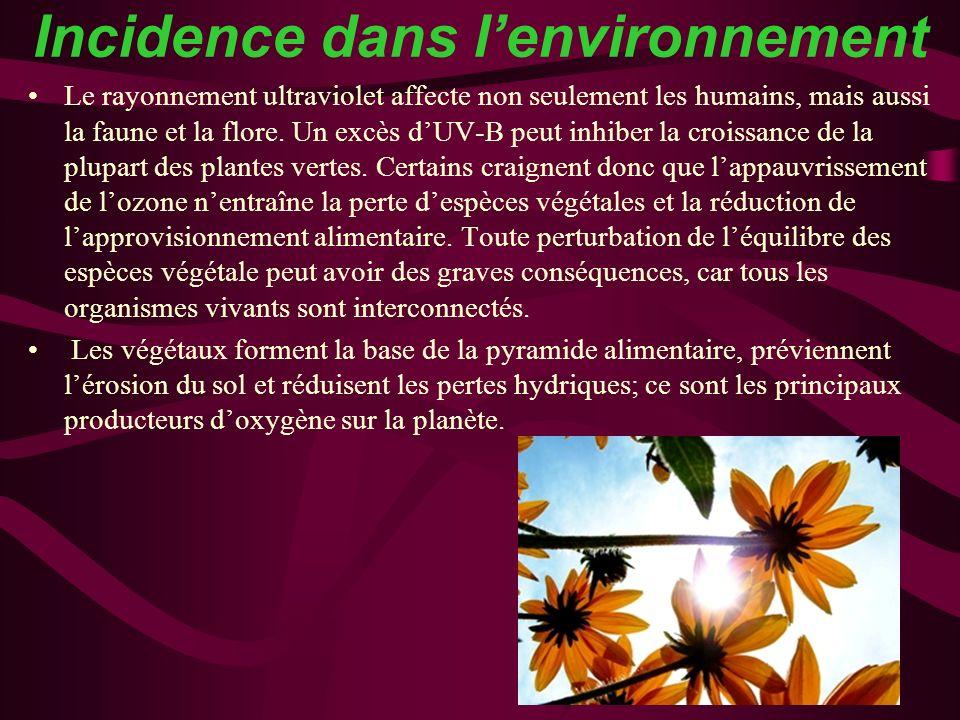 Incidence dans lenvironnement Le rayonnement ultraviolet affecte non seulement les humains, mais aussi la faune et la flore. Un excès dUV-B peut inhib