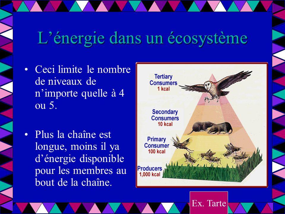 Lénergie dans un écosystème Ceci limite le nombre de niveaux de nimporte quelle à 4 ou 5. Plus la chaîne est longue, moins il ya dénergie disponible p
