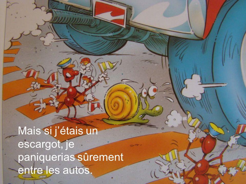 Mais si jétais un escargot, je paniquerias sûrement entre les autos.