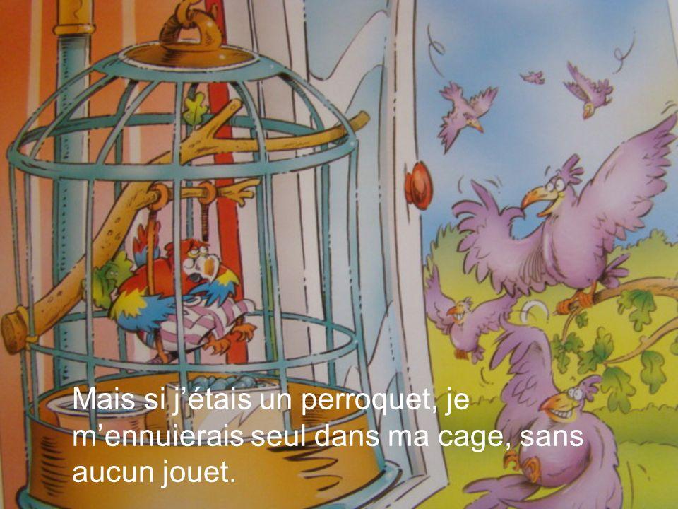 Mais si jétais un perroquet, je mennuierais seul dans ma cage, sans aucun jouet.