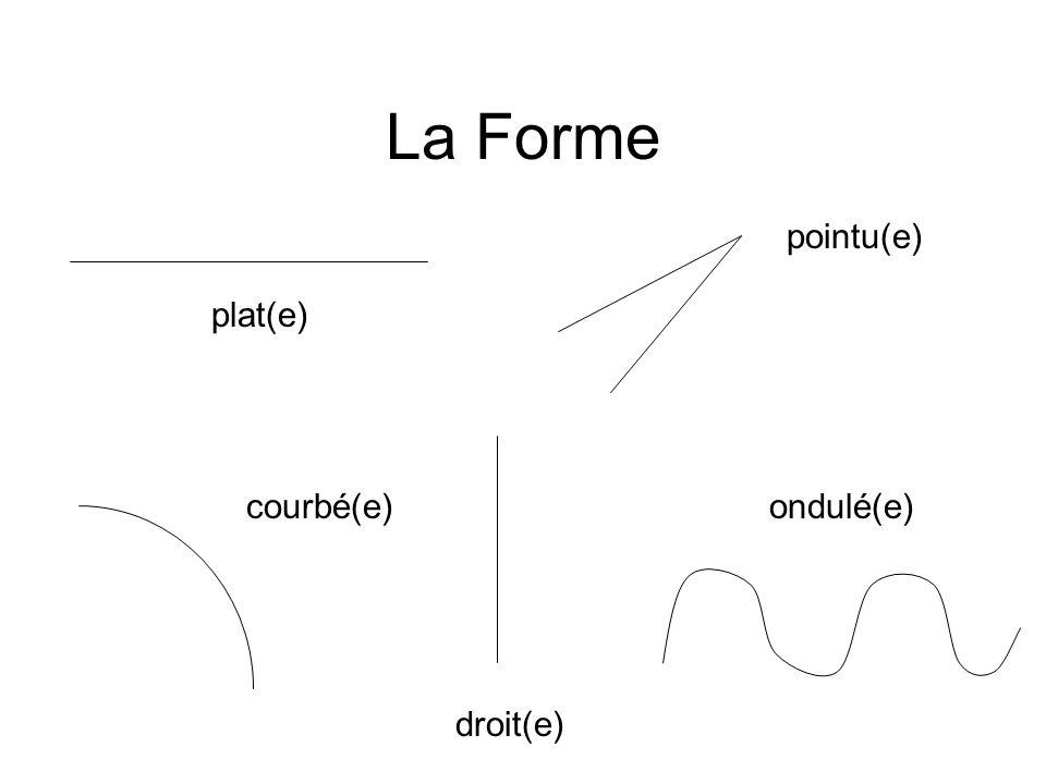 La Forme plat(e) pointu(e) courbé(e) droit(e) ondulé(e)