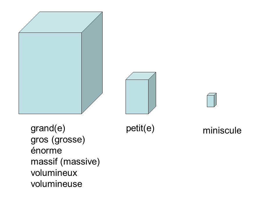 grand(e) gros (grosse) énorme massif (massive) volumineux volumineuse petit(e) miniscule