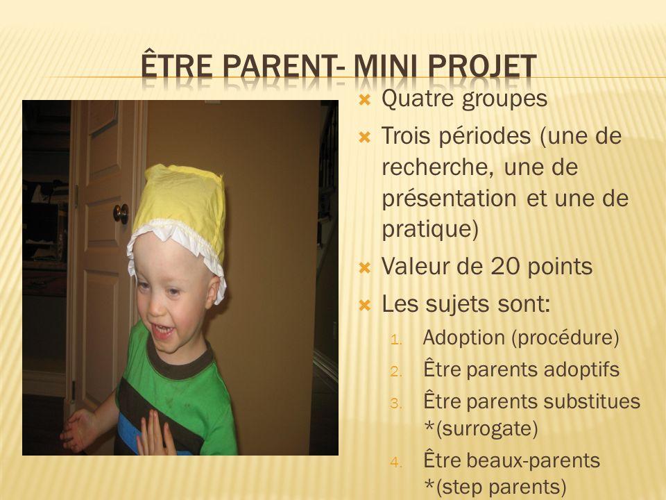 Quatre groupes Trois périodes (une de recherche, une de présentation et une de pratique) Valeur de 20 points Les sujets sont: 1. Adoption (procédure)