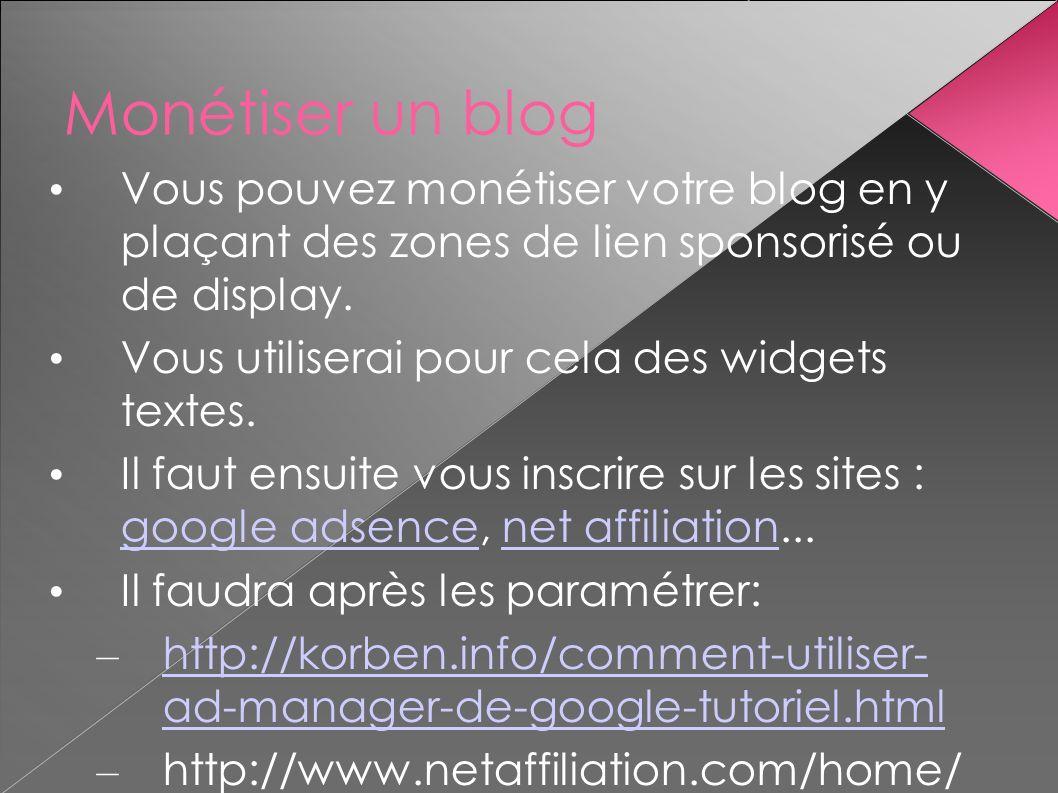 Monétiser un blog Vous pouvez monétiser votre blog en y plaçant des zones de lien sponsorisé ou de display. Vous utiliserai pour cela des widgets text