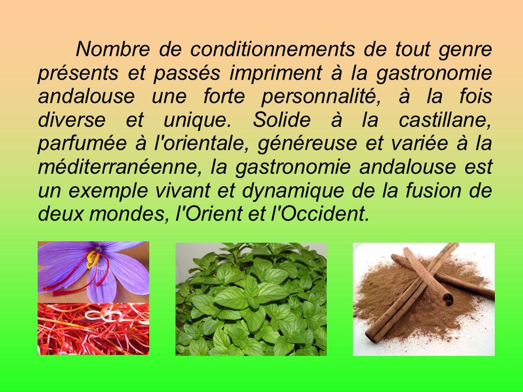 Nombre de conditionnements de tout genre présents et passés impriment à la gastronomie andalouse une forte personnalité, à la fois diverse et unique.