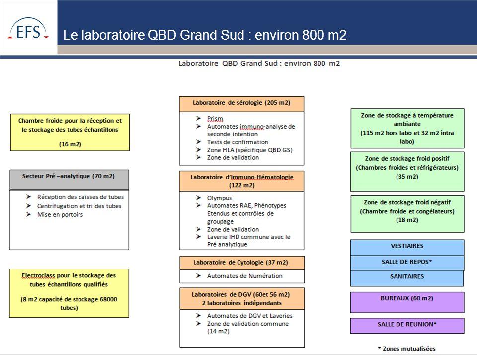 www.etablissement-francais-du-sang.fr Projet de Regroupement QBD Bilan regroupement QBD zone Sud du 05/09/12 4 Le laboratoire QBD Grand Sud : environ