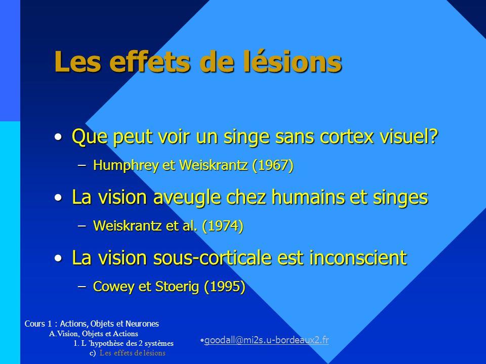 goodall@mi2s.u-bordeaux2.fr Vision, Objets et Actions L hypothèse des 2 systèmesL hypothèse des 2 systèmes Ventral versus dorsalVentral versus dorsal –Des résultats contradictoires...