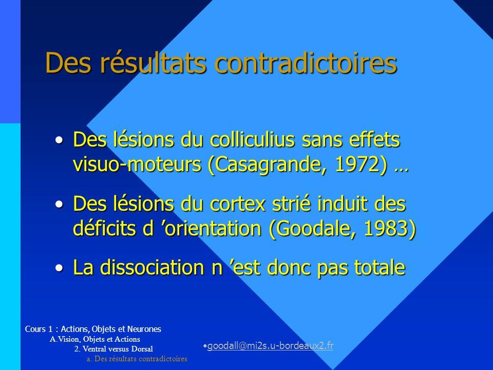 goodall@mi2s.u-bordeaux2.fr Des résultats contradictoires Des lésions du colliculius sans effets visuo-moteurs (Casagrande, 1972)...Des lésions du col