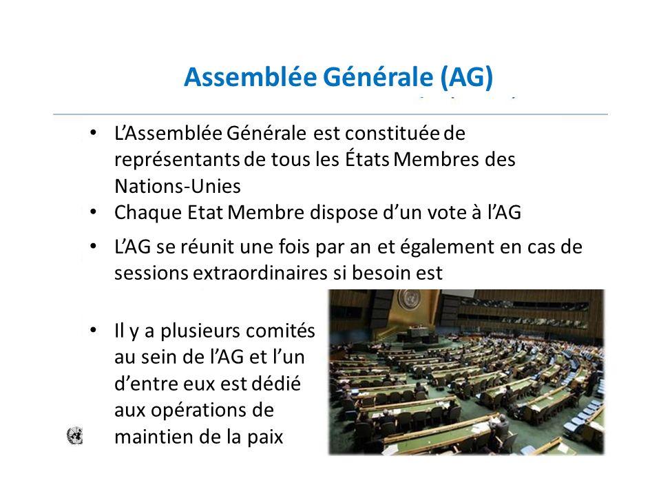 Assemblée Générale (AG) LAssemblée Générale est constituée de représentants de tous les États Membres des Nations-Unies Chaque Etat Membre dispose dun