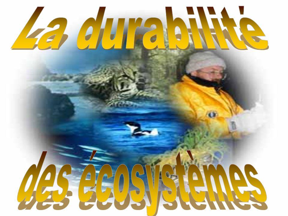 Quest-ce quun écosystème.