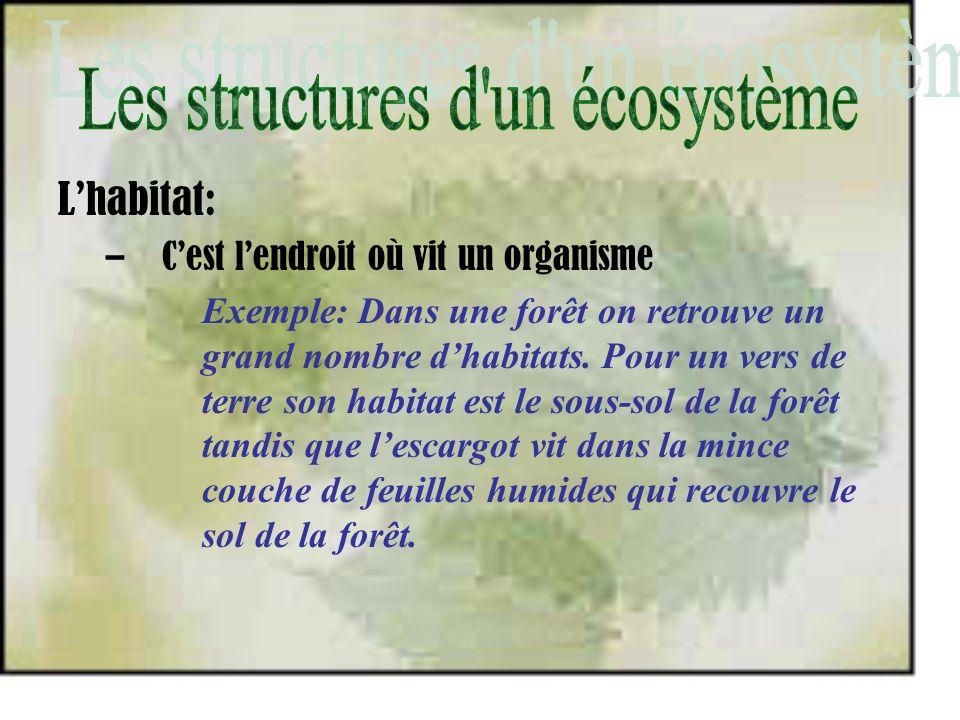 Lhabitat: –Cest lendroit où vit un organisme Exemple: Dans une forêt on retrouve un grand nombre dhabitats. Pour un vers de terre son habitat est le s