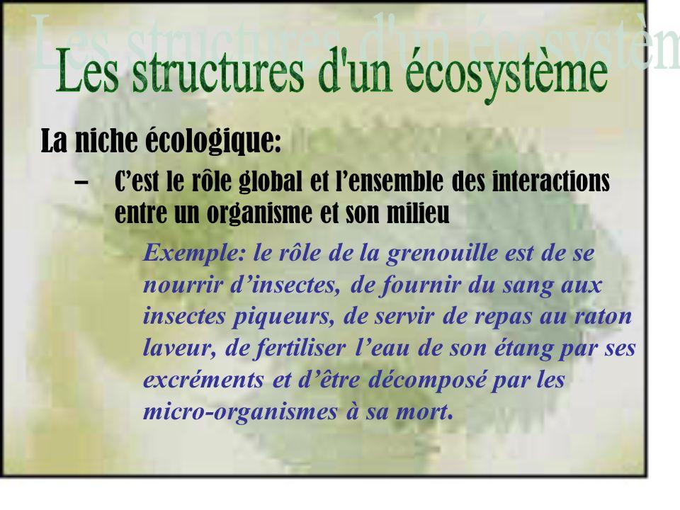La niche écologique: –Cest le rôle global et lensemble des interactions entre un organisme et son milieu Exemple: le rôle de la grenouille est de se n