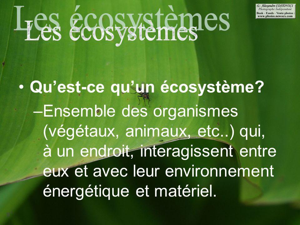 Quest-ce quun écosystème? –Ensemble des organismes (végétaux, animaux, etc..) qui, à un endroit, interagissent entre eux et avec leur environnement én