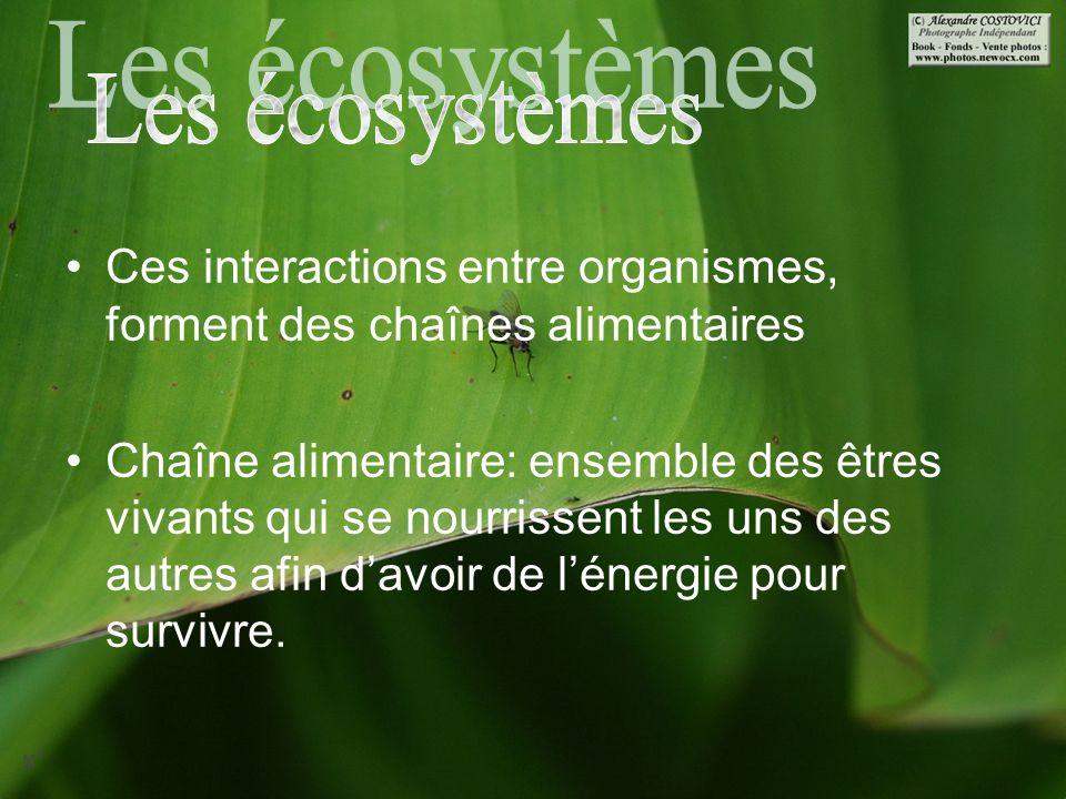 1.Destruction des habitats Provoque la disparition de nombreuses espèces.