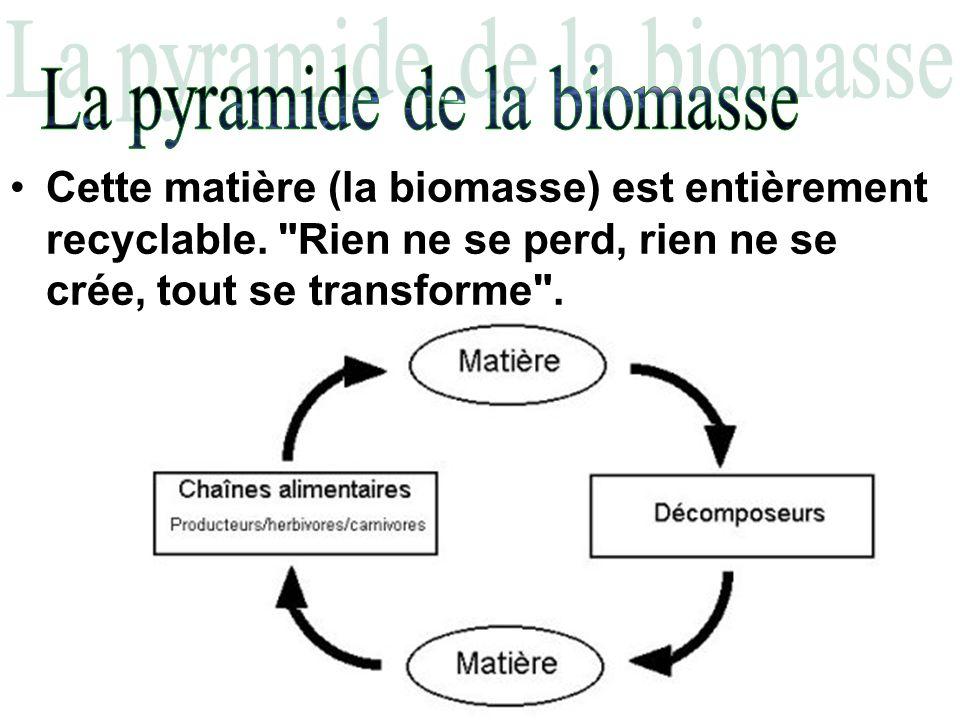 Cette matière (la biomasse) est entièrement recyclable.