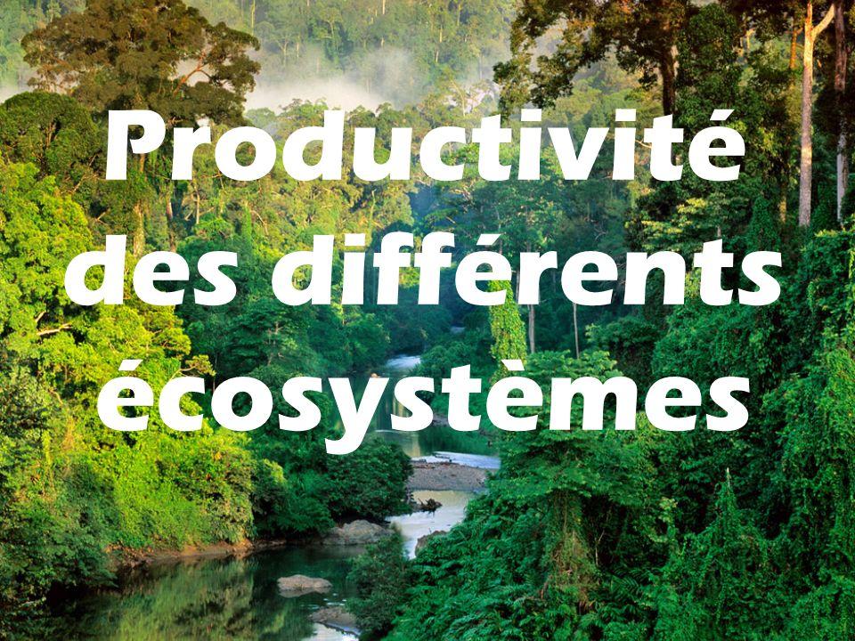 Productivité des différents écosystèmes