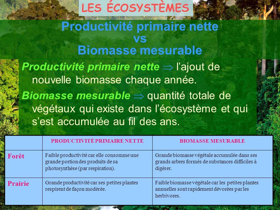 Productivité primaire nette vs Biomasse mesurable Productivité primaire nette lajout de nouvelle biomasse chaque année. Biomasse mesurable quantité to