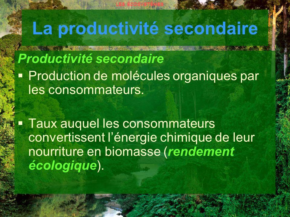 La productivité secondaire Productivité secondaire Production de molécules organiques par les consommateurs. Taux auquel les consommateurs convertisse