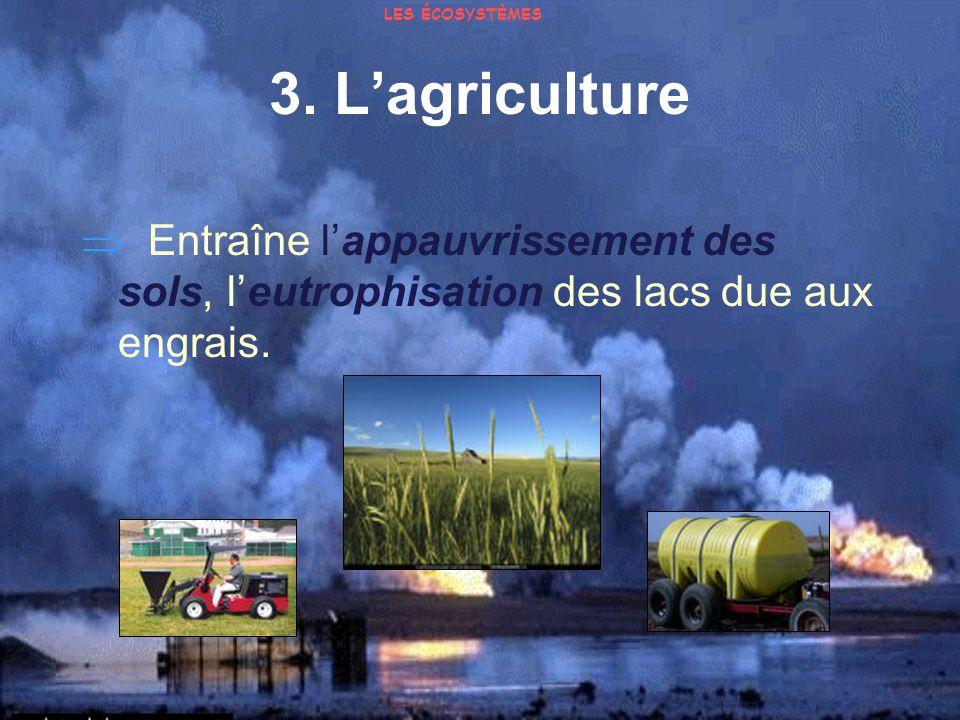 3. Lagriculture Entraîne lappauvrissement des sols, leutrophisation des lacs due aux engrais. LES ÉCOSYSTÈMES