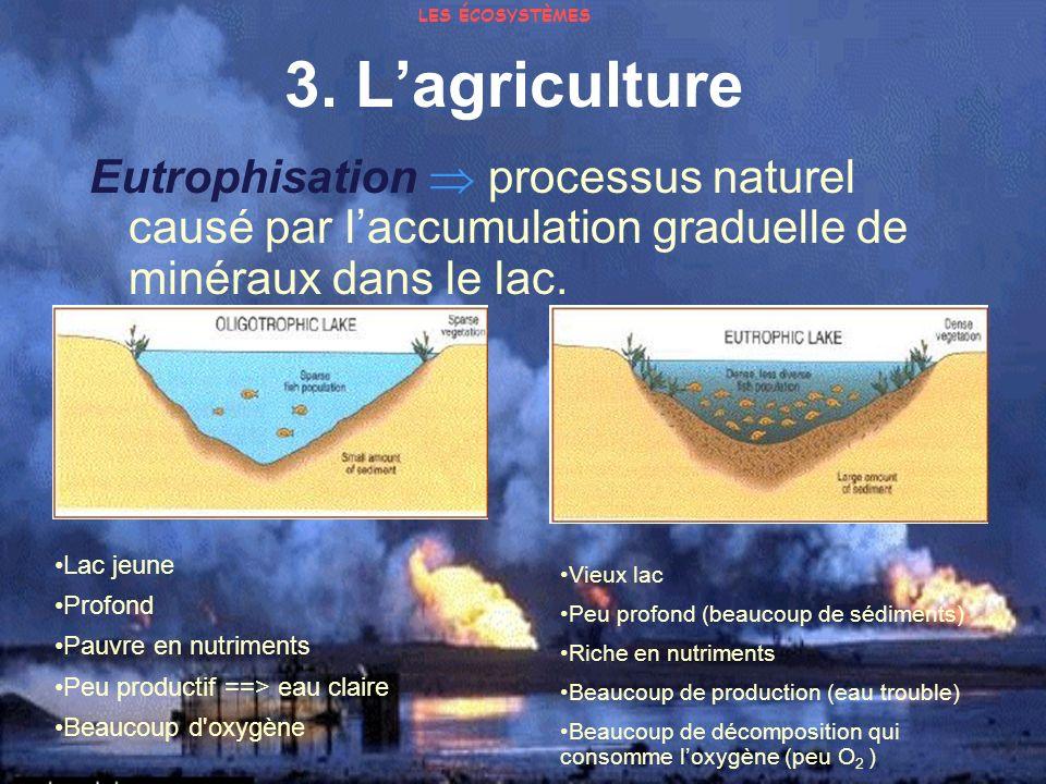 3. Lagriculture Eutrophisation processus naturel causé par laccumulation graduelle de minéraux dans le lac. Lac jeune Profond Pauvre en nutriments Peu