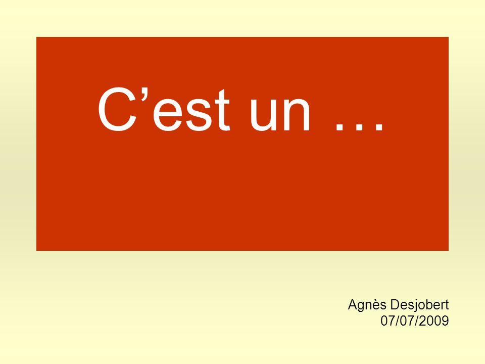 Cest un … Agnès Desjobert 07/07/2009