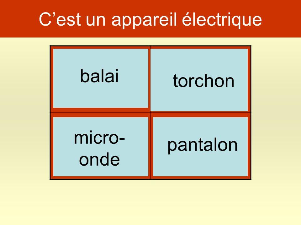 Cest un appareil électrique chien pantalon micro- onde balai torchon
