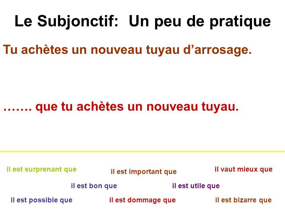 Le Subjonctif: Un peu de pratique il est bon que il est dommage que il est important que il est bizarre queil est possible que il est surprenant que i
