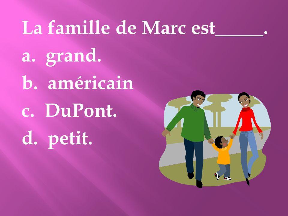 La famille de Marc est_____. a. grand. b. américain c. DuPont. d. petit.
