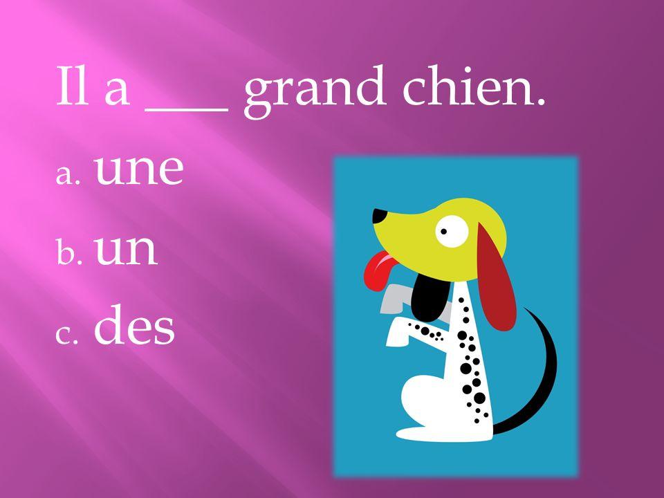 Il a ___ grand chien. a. une b. un c. des