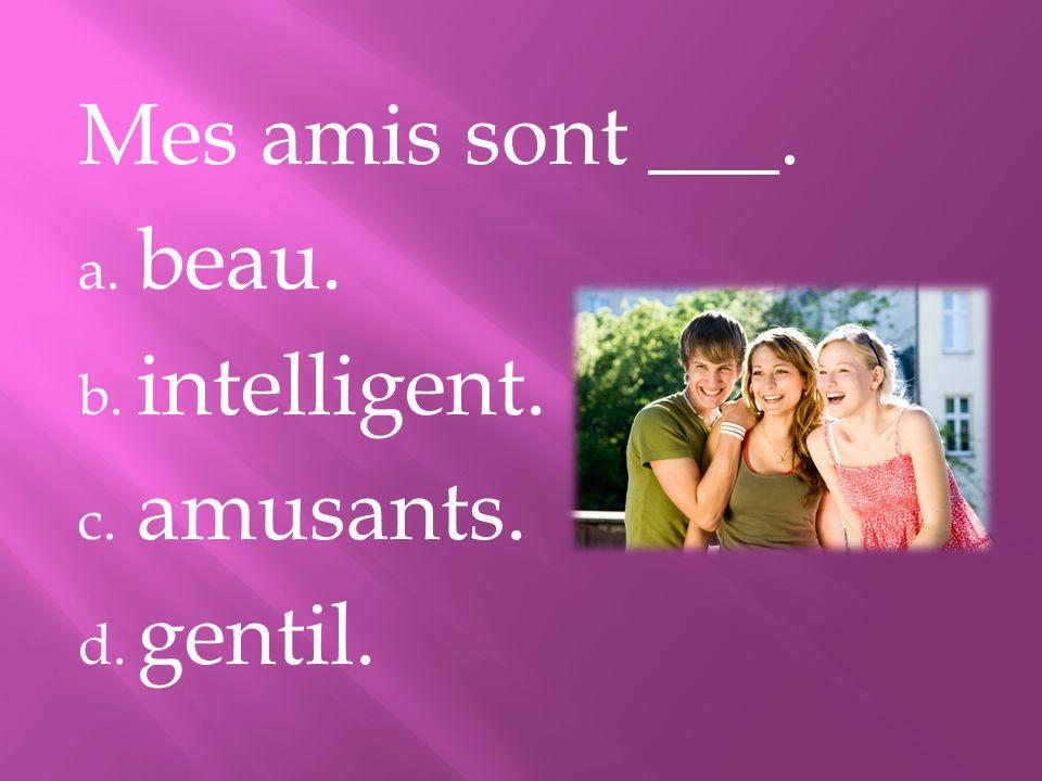 Mes amis sont ___. a. beau. b. intelligent. c. amusants. d. gentil.