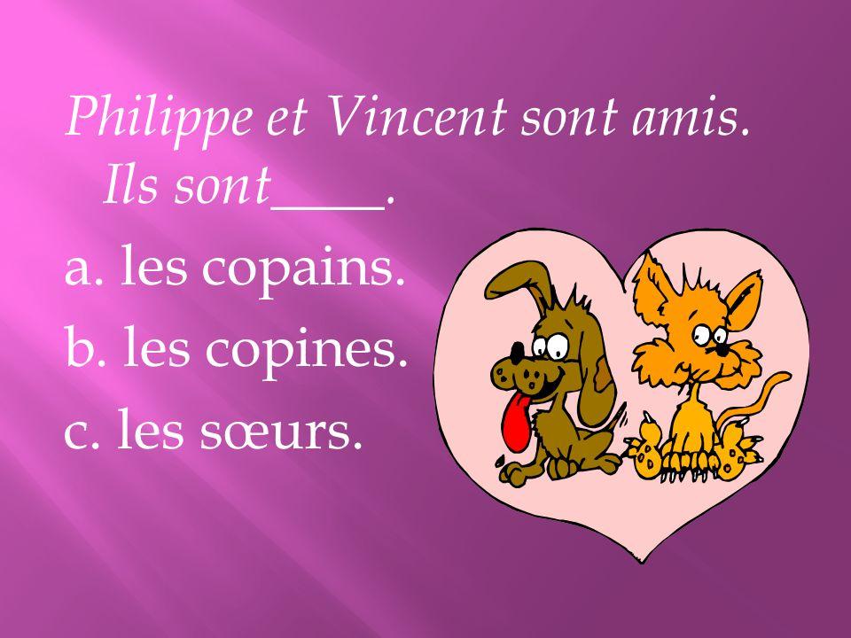 Philippe et Vincent sont amis. Ils sont____. a. les copains. b. les copines. c. les sœurs.