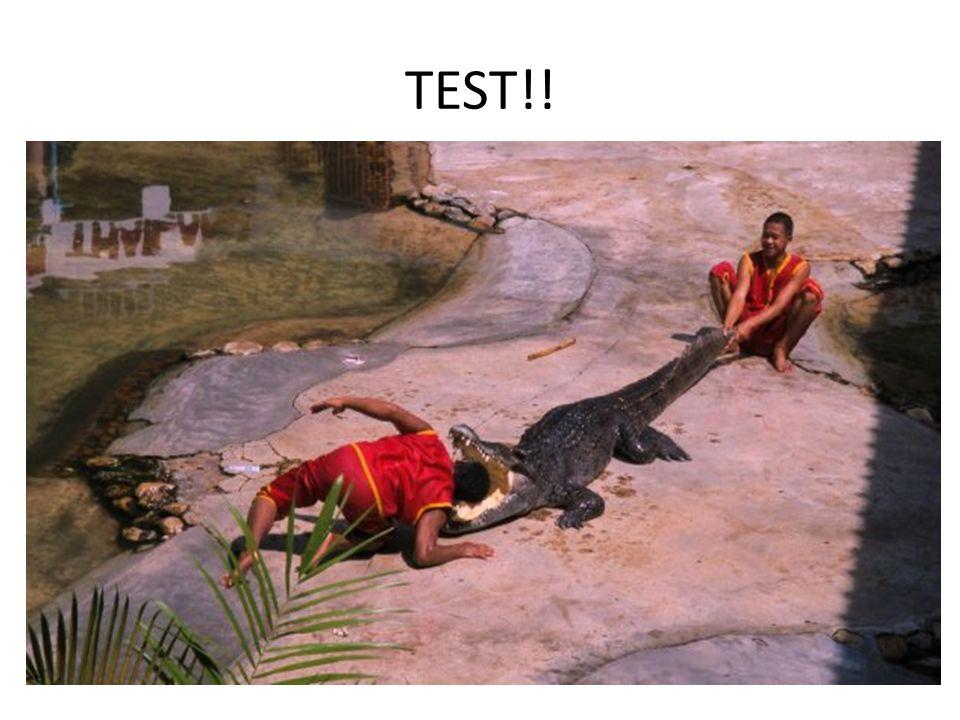 TEST!!